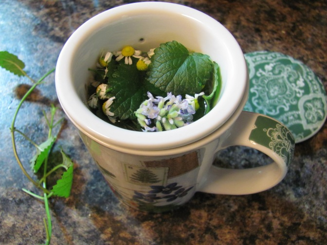 Tea Herbs And Lavender Creations