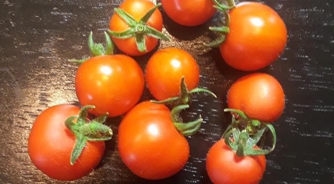 Mini Tomatoes
